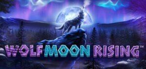 Slot Serigala Bulan Terbit
