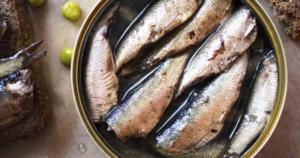 Ikan Berminyak (atau Ikan Berlemak)